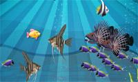 Fish N Prey
